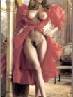 Elizabeth Hurley Nude Fakes - 005